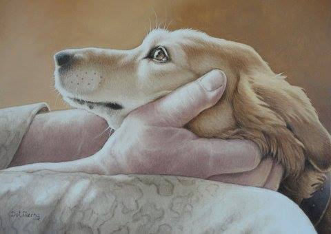 Animal charity day