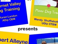 Robert Alleyne presents....Common sense training for a trouble free dog