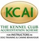 KCAI member
